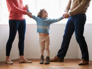 St. Pete Divorce Lawyer